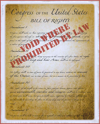 constitutional rights image